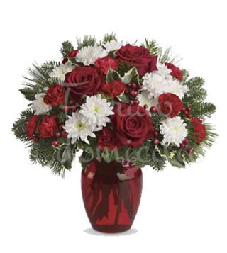 rose-rosse-e-crisantemi-bianchi