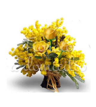 mimose-tre-gialle