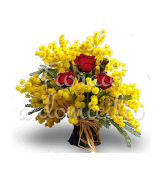 mimose-tre-rosse